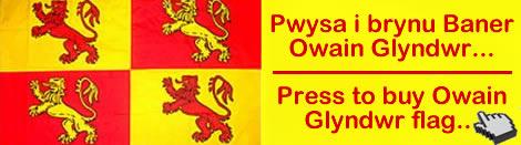 Baner Owain Glyndwr